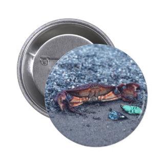A Shore Crab 2 Inch Round Button