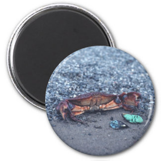 A Shore Crab 2 Inch Round Magnet