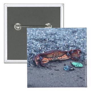 A Shore Crab 2 Inch Square Button