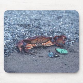A Shore Crab Mouse Pad