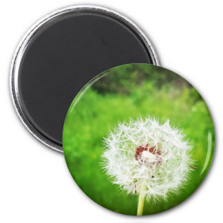 a simple wish 2 inch round magnet