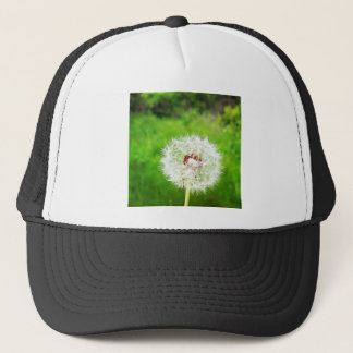 a simple wish trucker hat