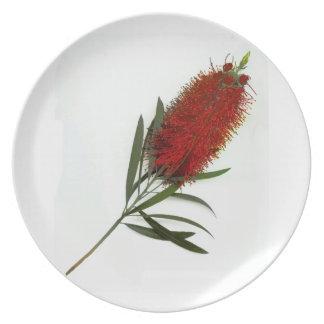 A Single BottleBrush Blossom Plate