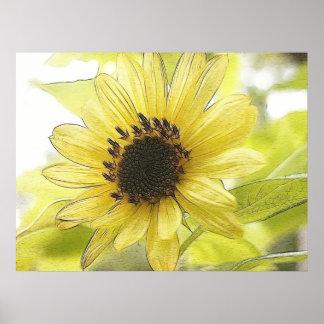 A Single Lemon Yellow Sunflower Poster