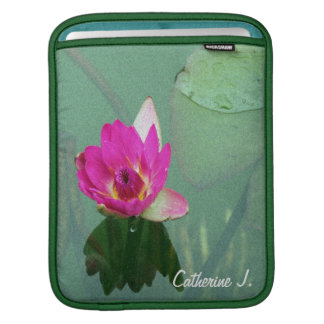A single pink waterlily in a pond sleeve for iPads