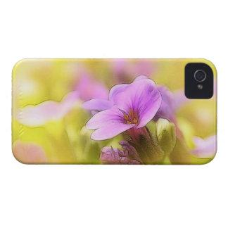 A Single Purple Rock Cress Flower Case-Mate iPhone 4 Case