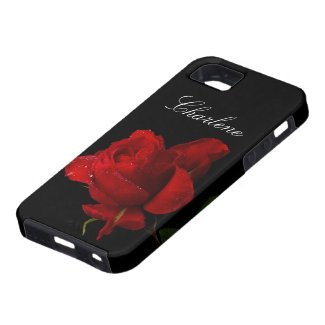 A Single Red Rose iPhone 5 Case