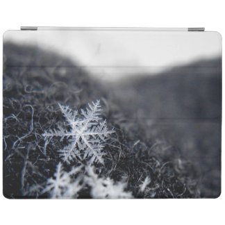 A single snowflake on stands out iPad smart cover