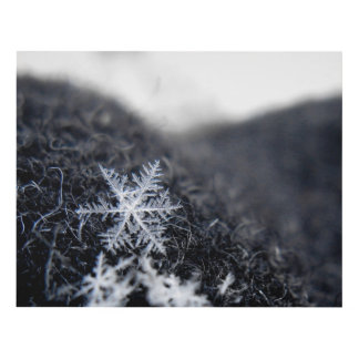 A single snowflake on stands out panel wall art