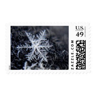 A single snowflake on stands out postage