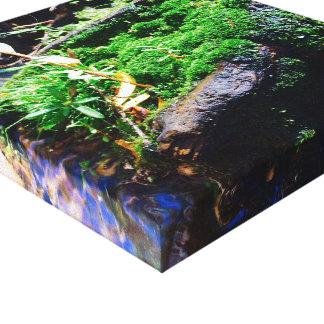 A Single Suckling Canvas Print
