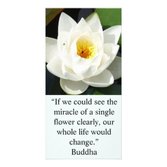 A Single White Flower Card