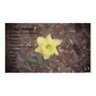 a single yellow dafodill business card