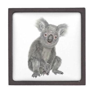 A Sitting Koala Jewelry Box