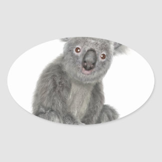 A Sitting Koala Oval Sticker