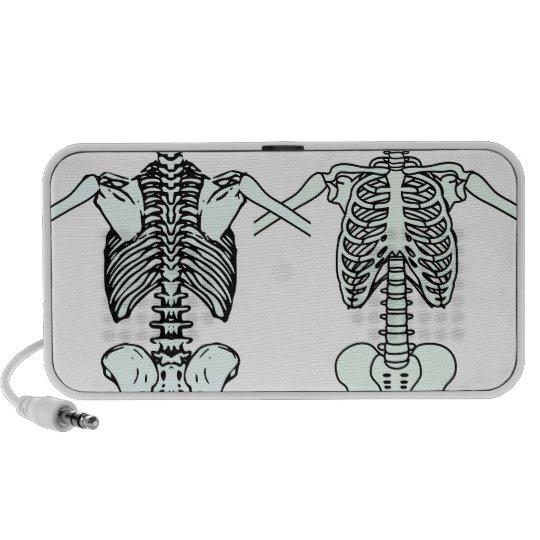 a skeleton speaker