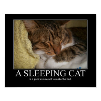 A Sleeping Cat Artwork Poster