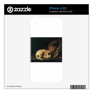 A Sleeping Dog with Terracotta Pot by Gerrit Dou Skin For The iPhone 4S