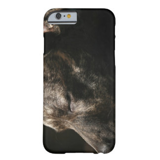 A sleeping pit bull dog barely there iPhone 6 case