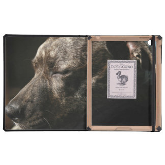A sleeping pit bull dog cover for iPad