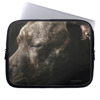 A sleeping pit bull dog laptop computer sleeve