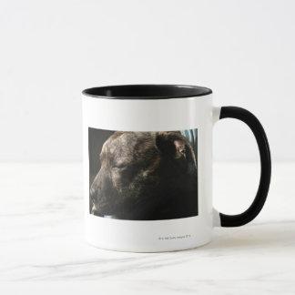 A sleeping pit bull dog mug
