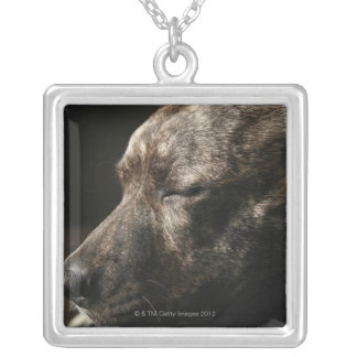 A sleeping pit bull dog square pendant necklace