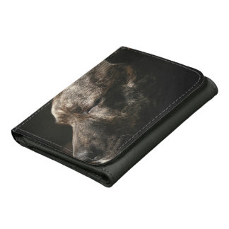 A sleeping pit bull dog wallet