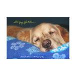 A Sleepy Golden Retriever Canvas Prints