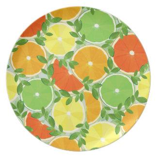 A Slice of Citrus Melamine Plate