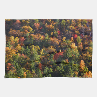 A Slice of Fall Towels