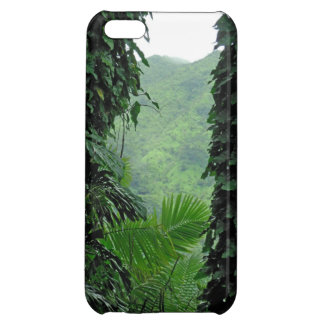 A Slice of Paradise iPhone 5C Case