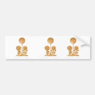 A Slime Mould Bumper Stickers
