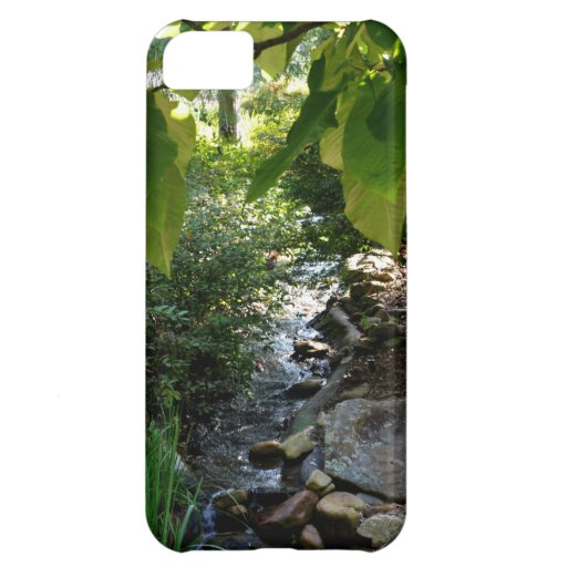 A Small Creek iPhone 5C Cover