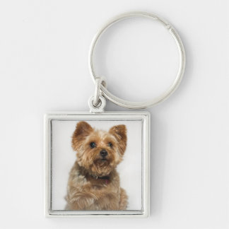 A small Dog Key chain/keyring Silver-Colored Square Keychain