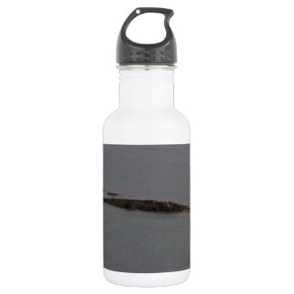 A small island in the lake stainless steel water bottle