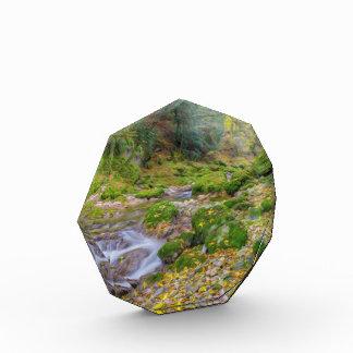 A Small Stream Acrylic Award
