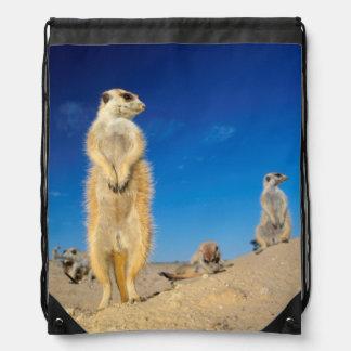 A small Suricate family interacting at their den Drawstring Bag