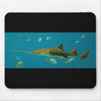A Smalltooth Sawfish Pristis pectinata Mouse Pad