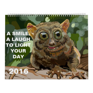 A Smile, A Laugh, To Light Your Day 2016 Calendar