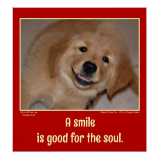A smile is good for the soul -- smiling puppy poster