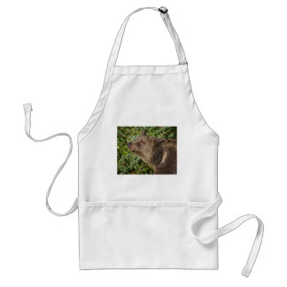 A Smiling Grizzly Bear Adult Apron