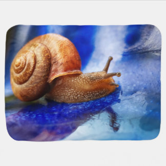 A Snails Pace Baby Blanket