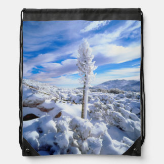A snow covered yucca drawstring backpack