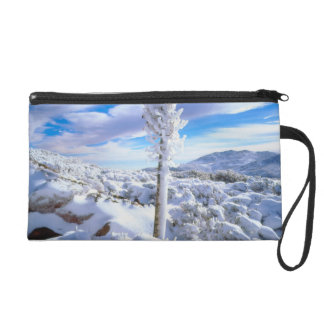 A snow covered yucca wristlet purse