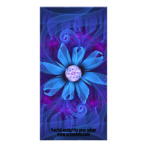 A Snowy Edelweiss Blooms as a Blue Origami Orchid Card