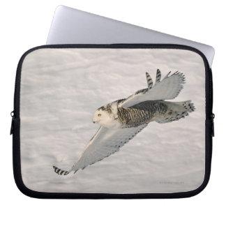 A Snowy owl gliding. Laptop Sleeve
