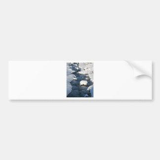 A Snowy River view Bumper Sticker