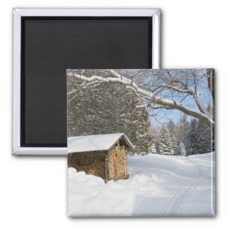 A snowy scene at the AMC's Little Lyford Pond Magnet