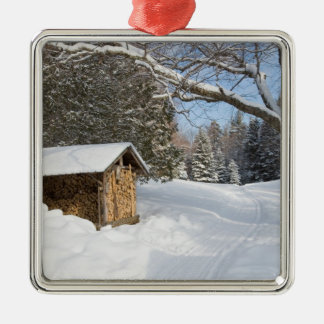A snowy scene at the AMC's Little Lyford Pond Metal Ornament